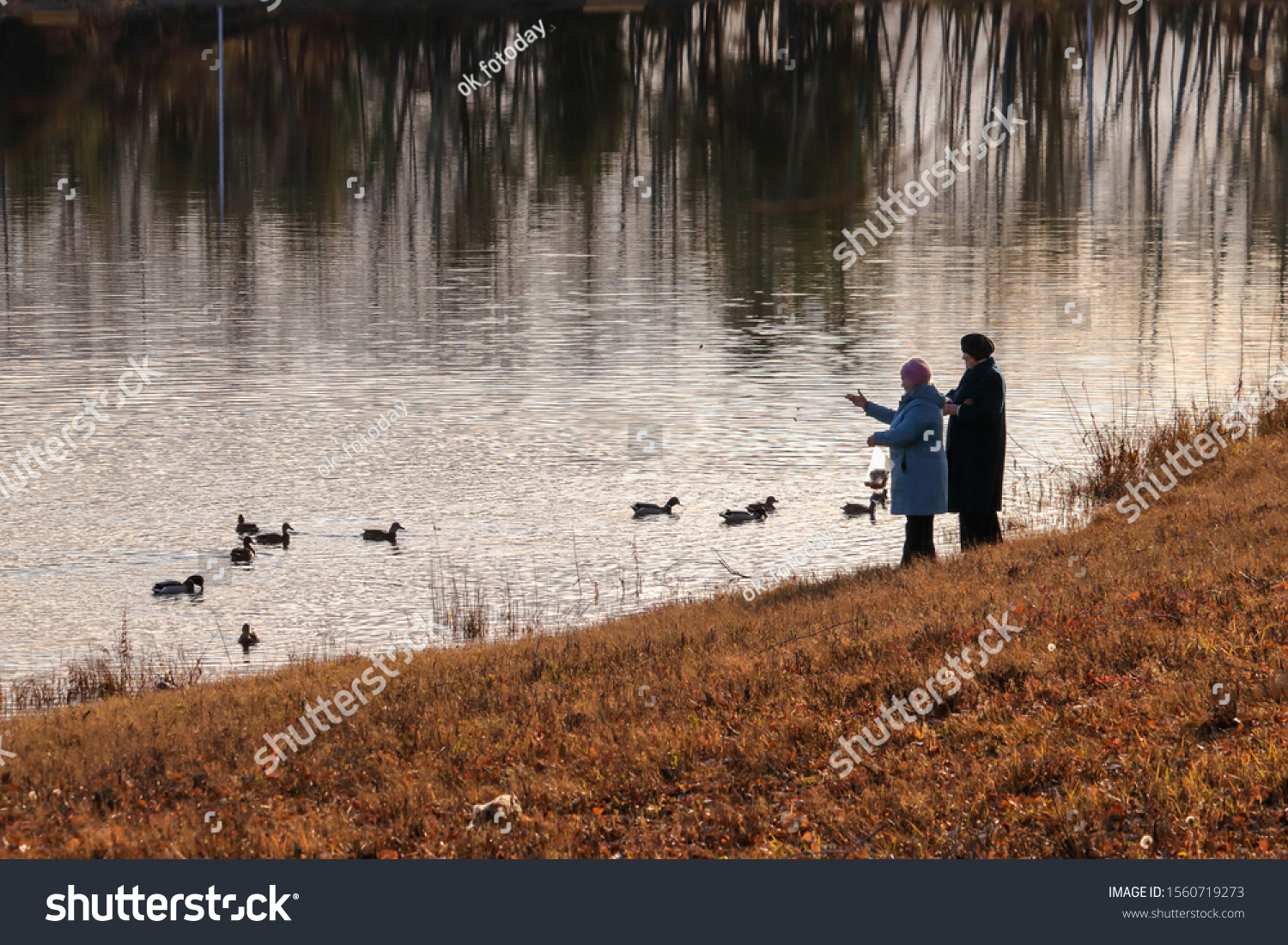 stock-photo-two-elderly-women-feed-malla