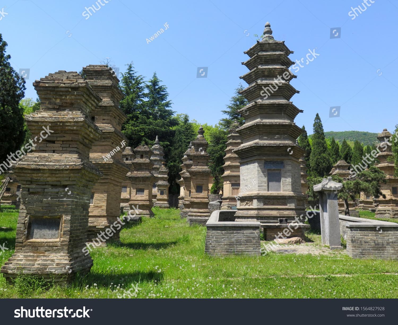 stock-photo-luoyang-china-april-pagoda-f