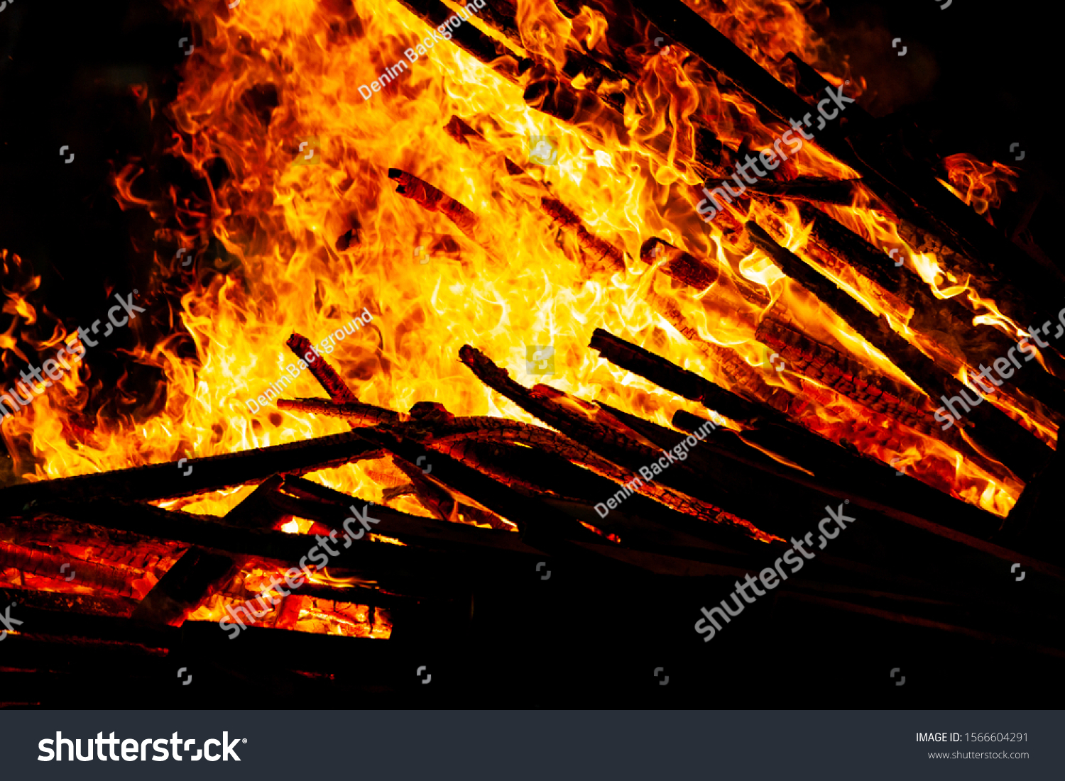 Bonfire that burns on a dark background, wood burning flame. #1566604291