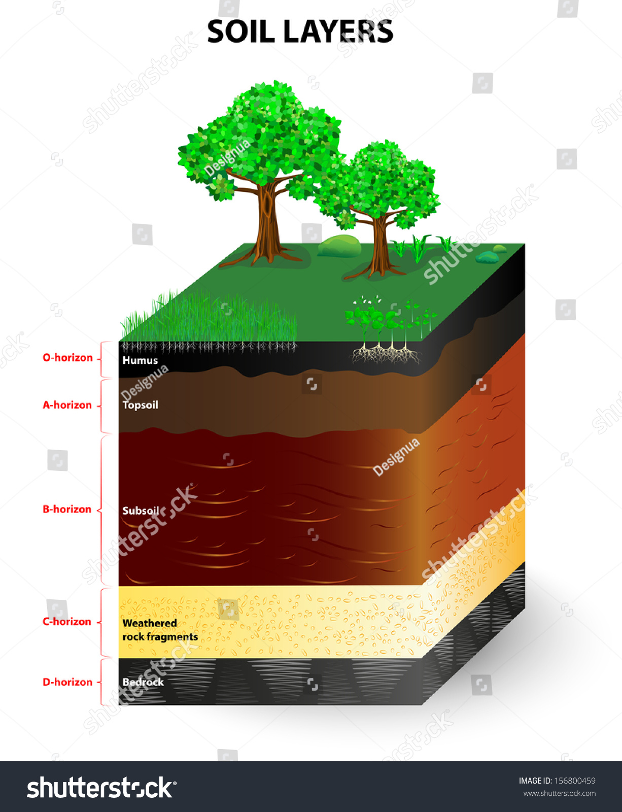 Soil formation soil horizons soil mixture stock vector for What is soil a mixture of
