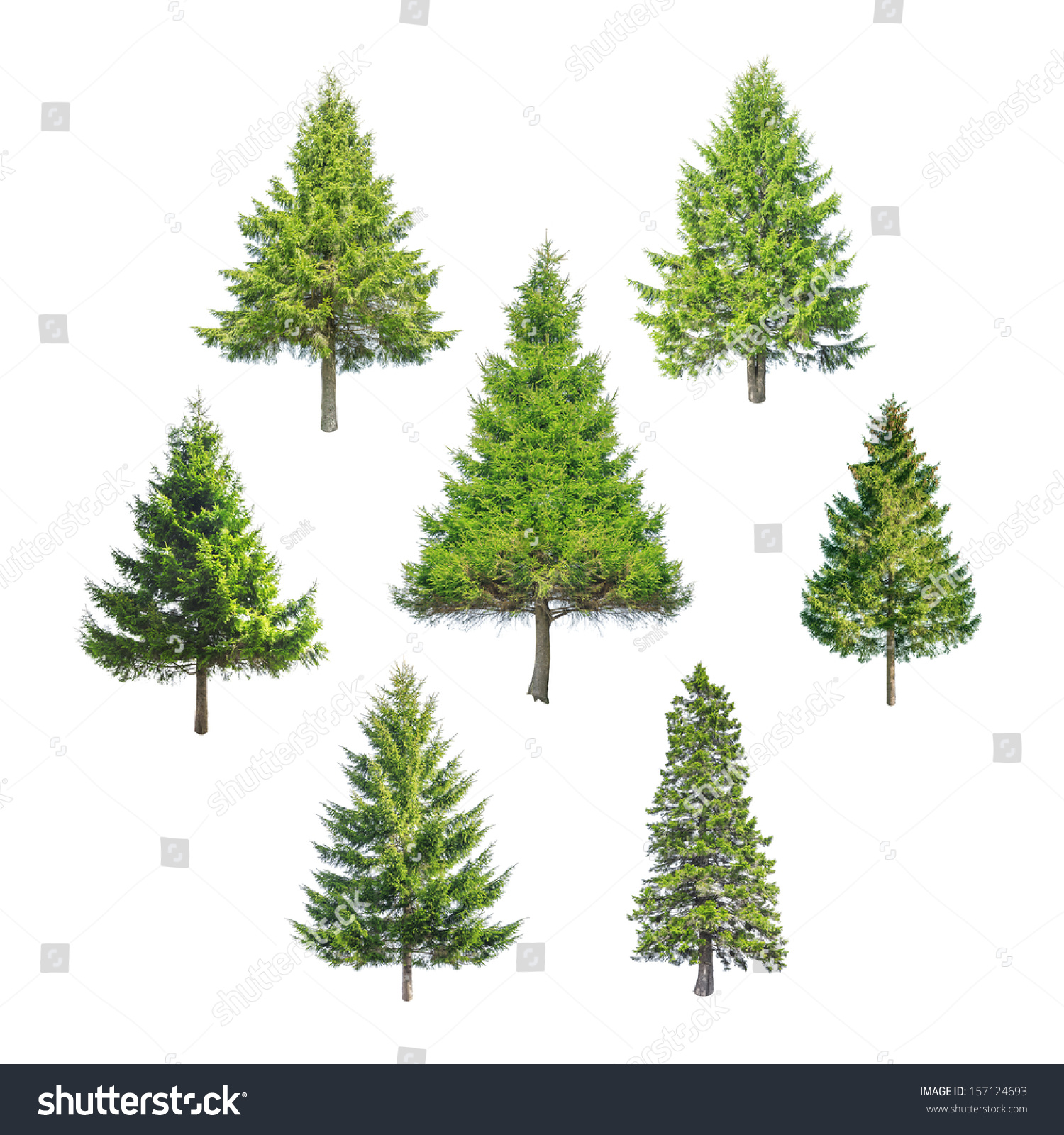 Christmas Tree Isolated On White Stock Photo (Edit Now) 157124693 ...