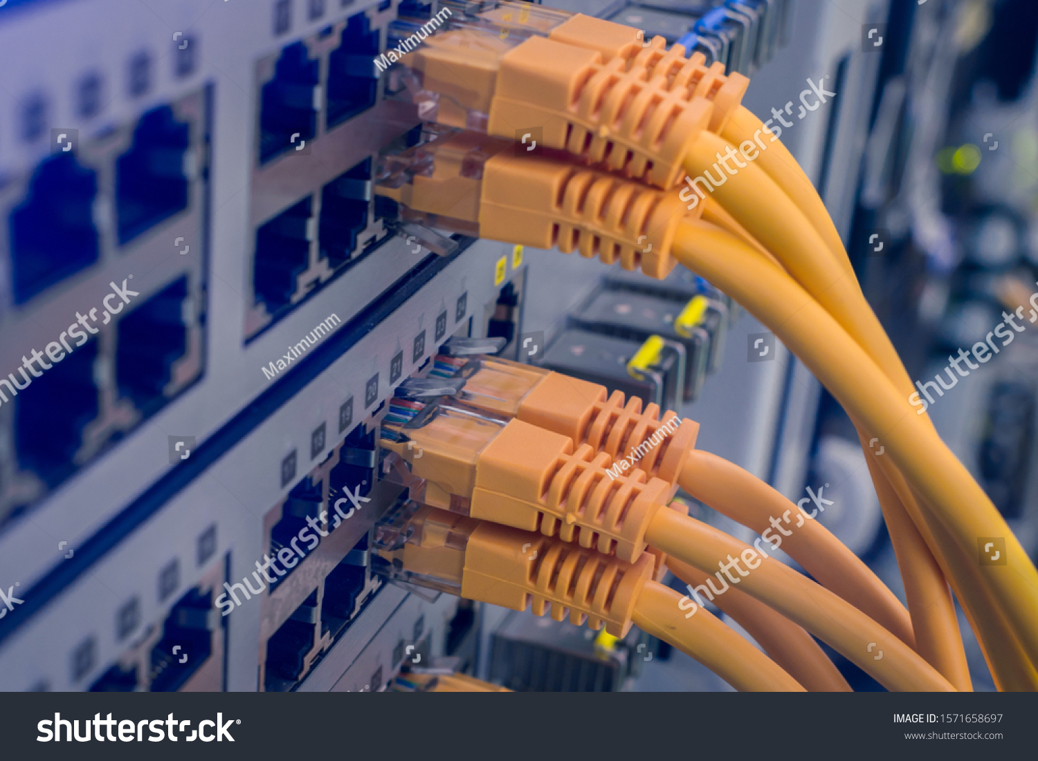 Internet utp wires are closeup. A bunch of yellow communication cables connect to the router interfaces. Telecommunication equipment is in the server room of the data center. Technology concept. #1571658697
