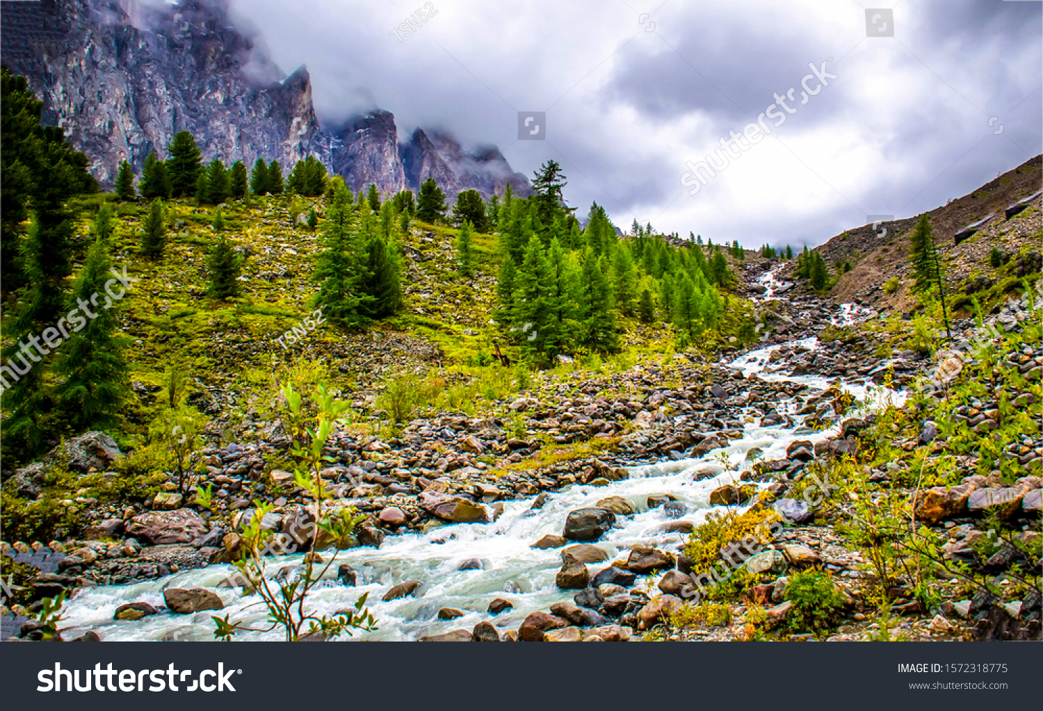 Mountain valley river stream landscape. River stream in mountains. Mountain river stream landscape. Mountain river stream valley #1572318775