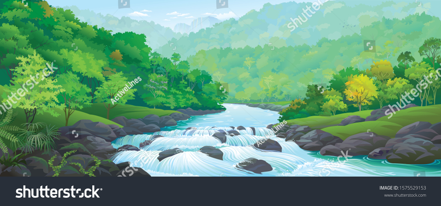 A river stream flowing across thick green forest