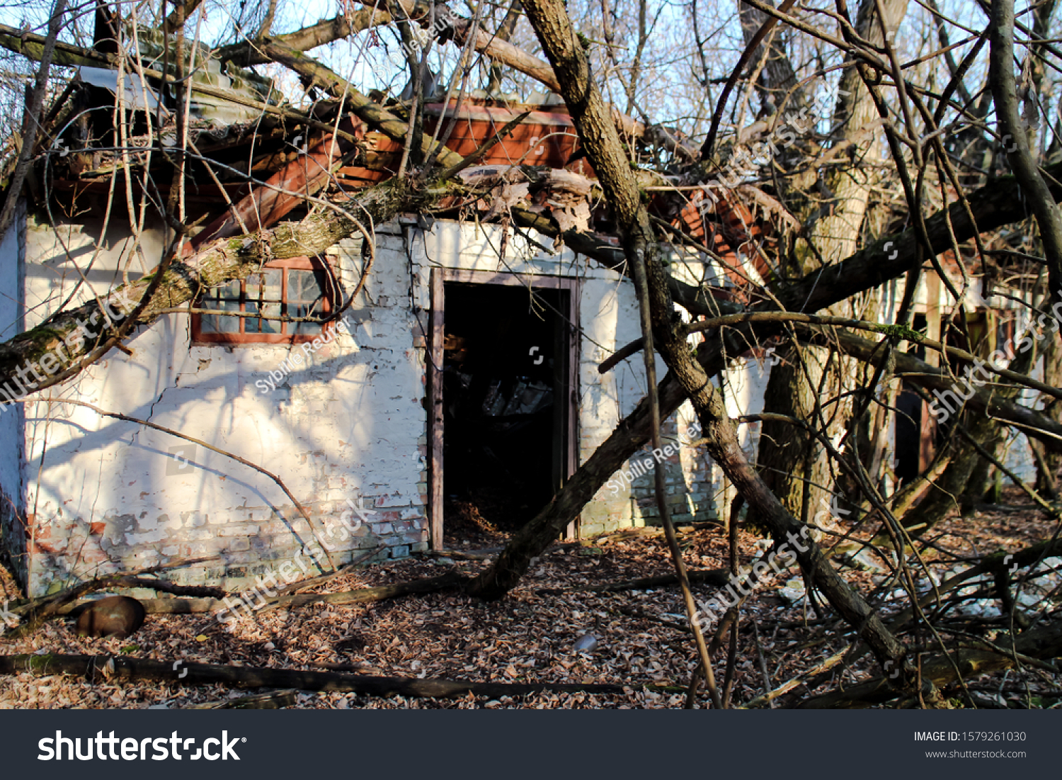 stock-photo-decaying-and-overgrown-ruins