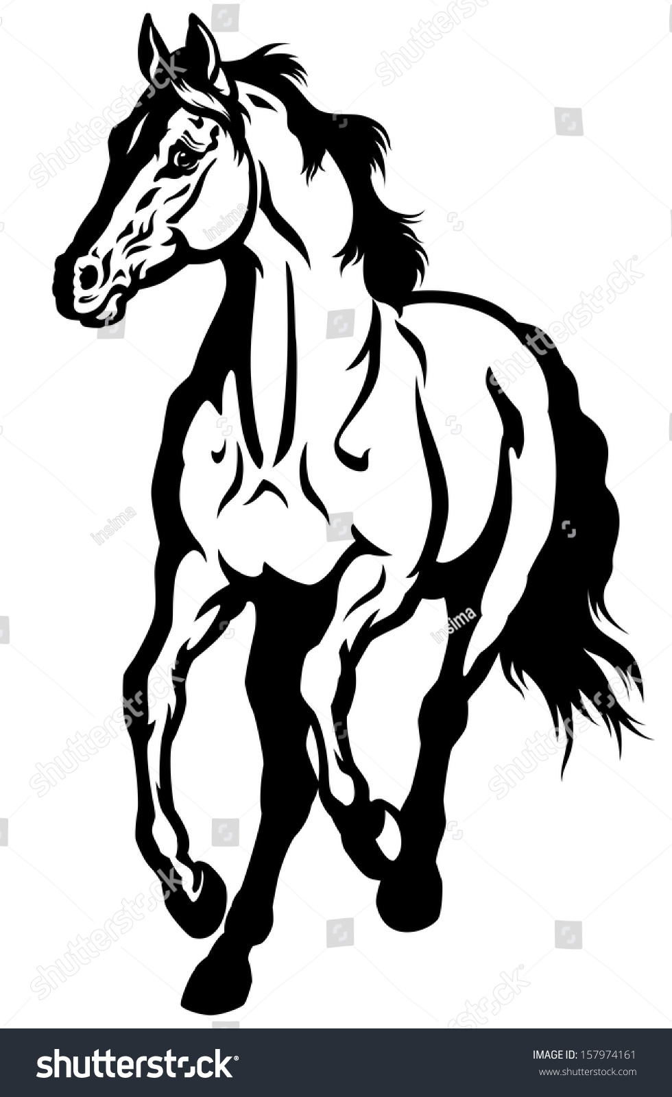 Horse Front Vector