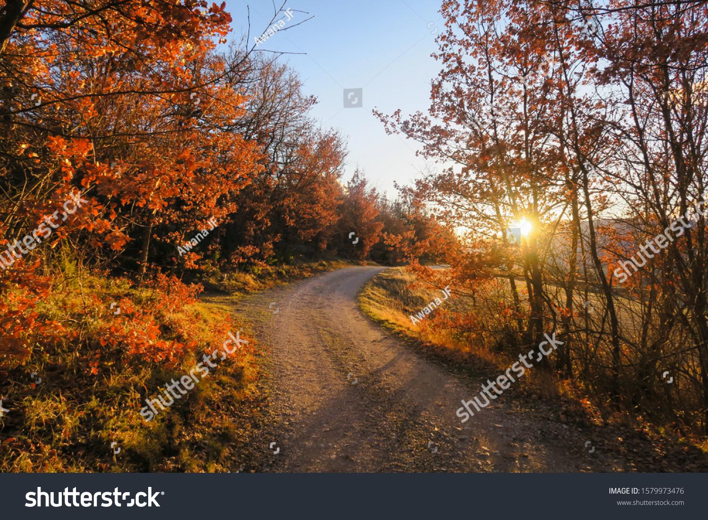 stock-photo-sunset-shinning-through-the-