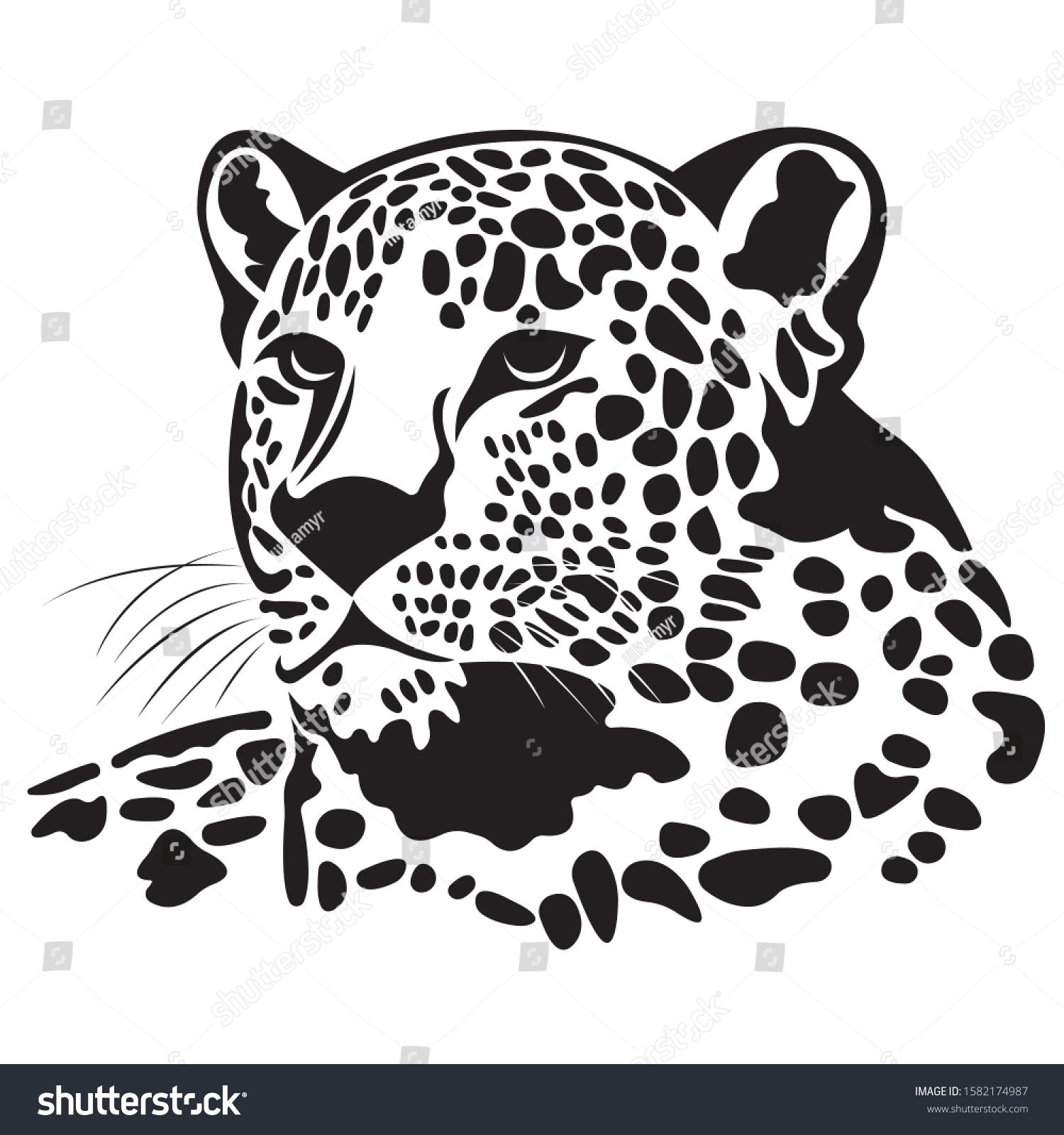 Silhouette Jaguar Head Painted Black Various Stock Vector Royalty Free 1582174987