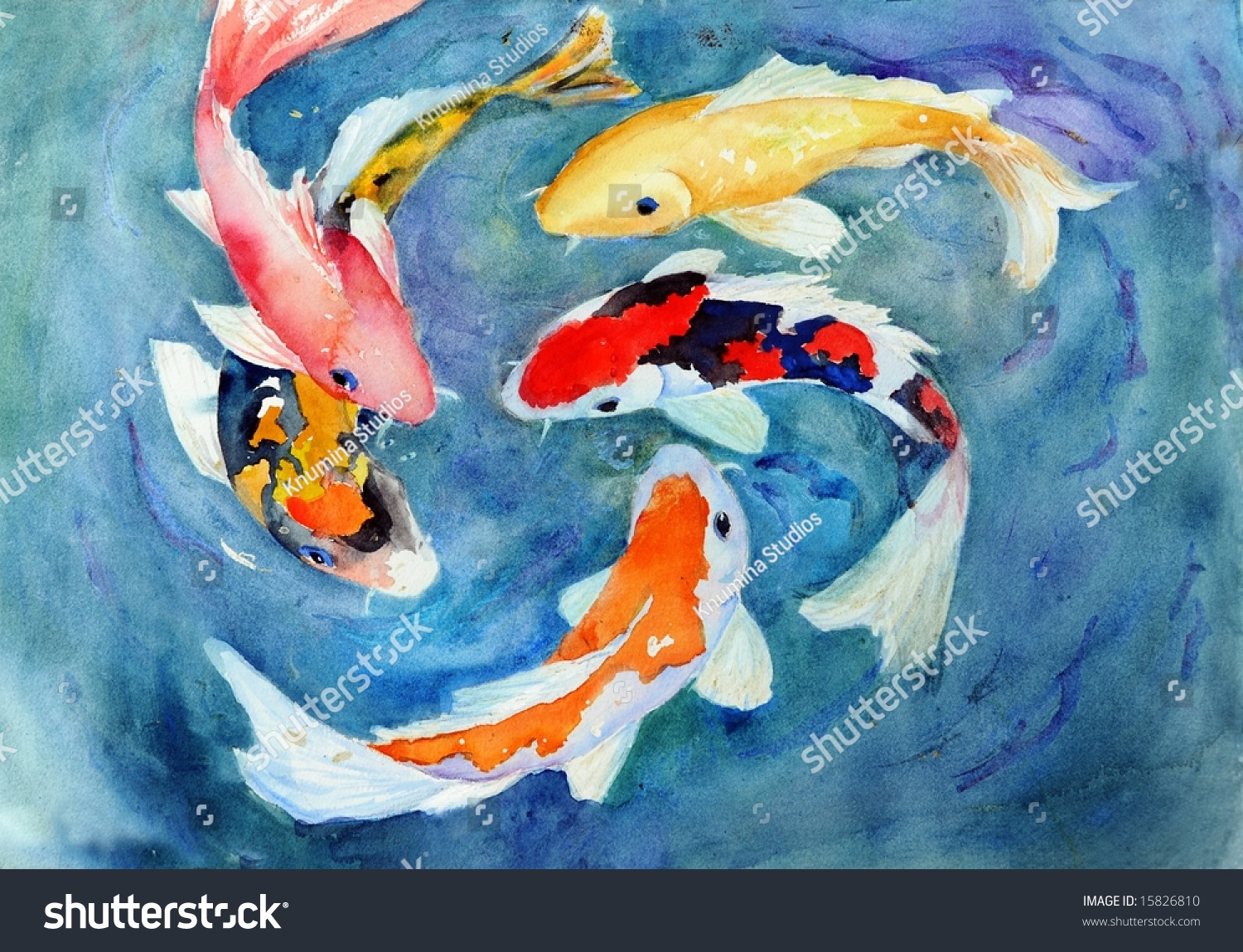 Watercolor koi swimming stock illustration 15826810 Koi fish swimming pool