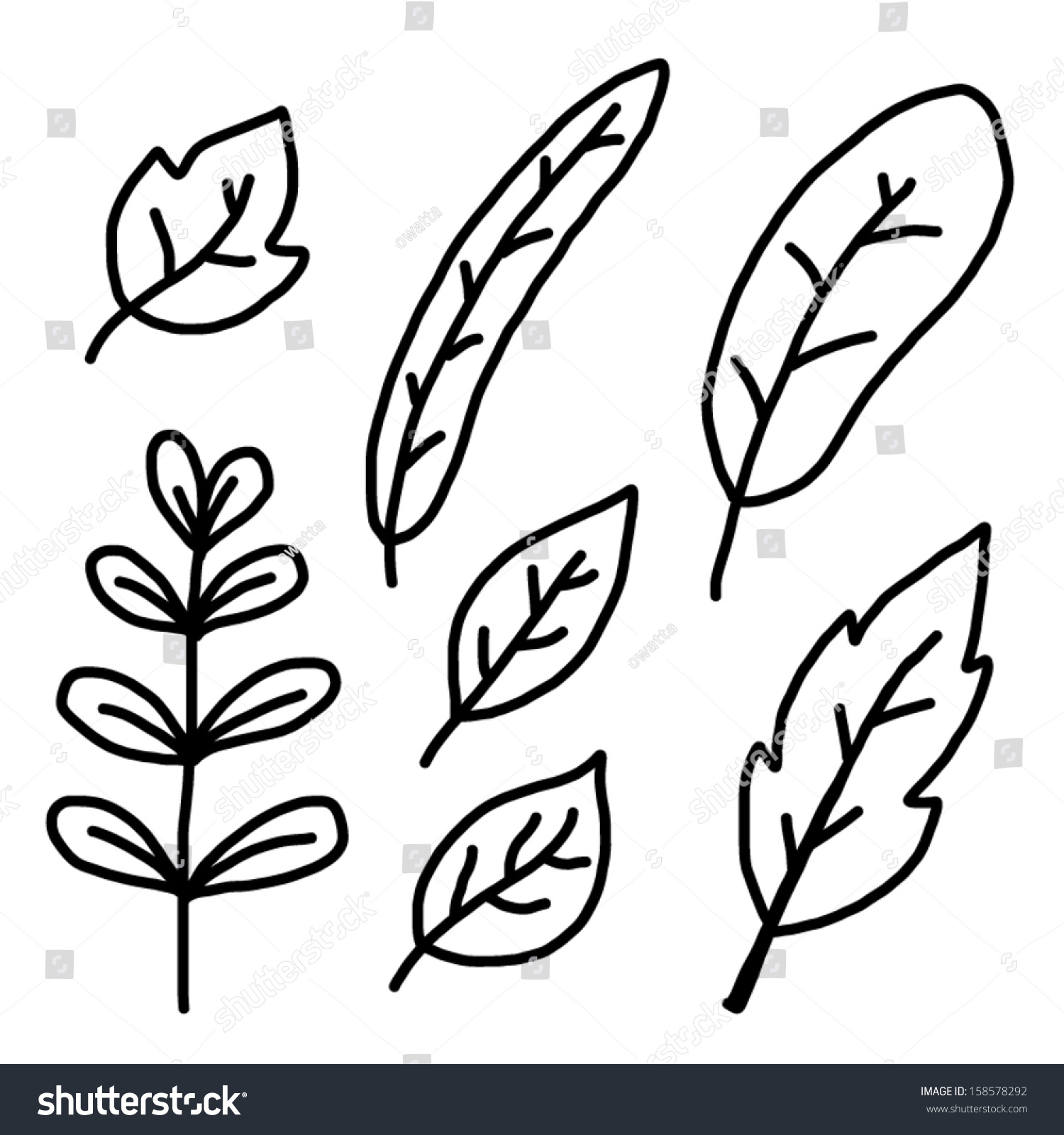 Many Type Plant Leaf Cartoon Vector Stock Vector 158578292 ...