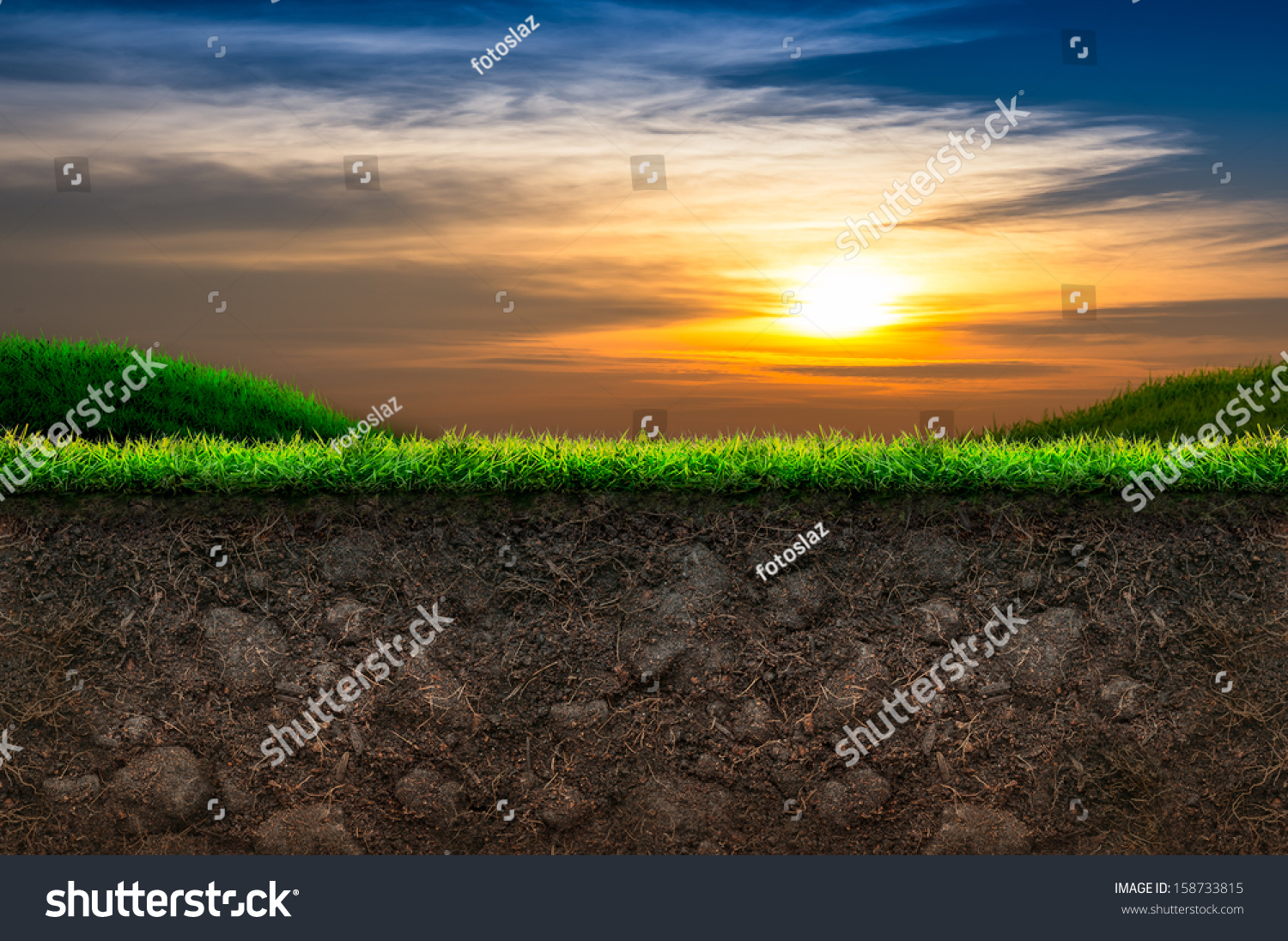 soil and green grass in sunset background stock photo