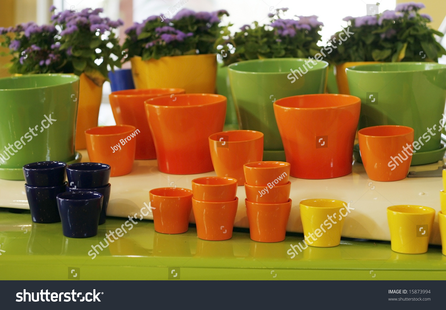 Colorful Planters Stock Photo (Safe to Use) 15873994 - Shutterstock