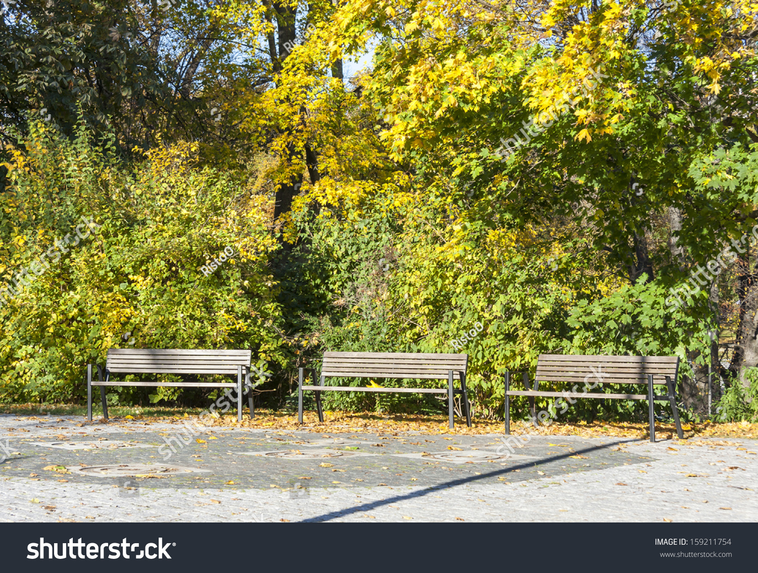 Three Benches Park Front Colorful Trees Stock Photo (Edit Now ...