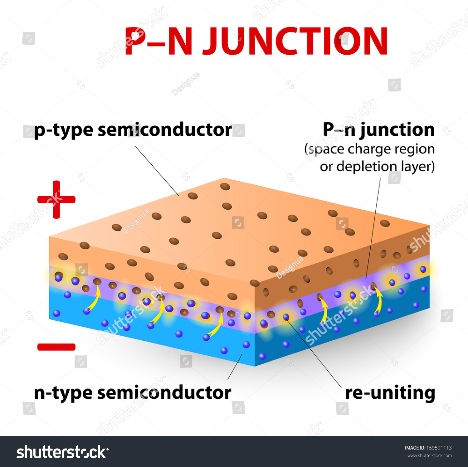 Pn Junction Ptype Silicon Layer Contains Stock Illustration Understanding The P N Type More Positive Charges Called Holes