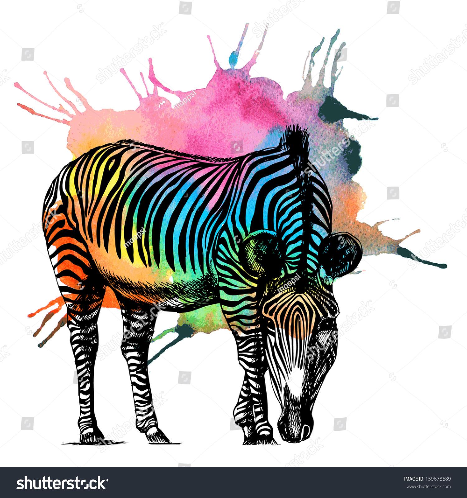 зебры в большом разрешении