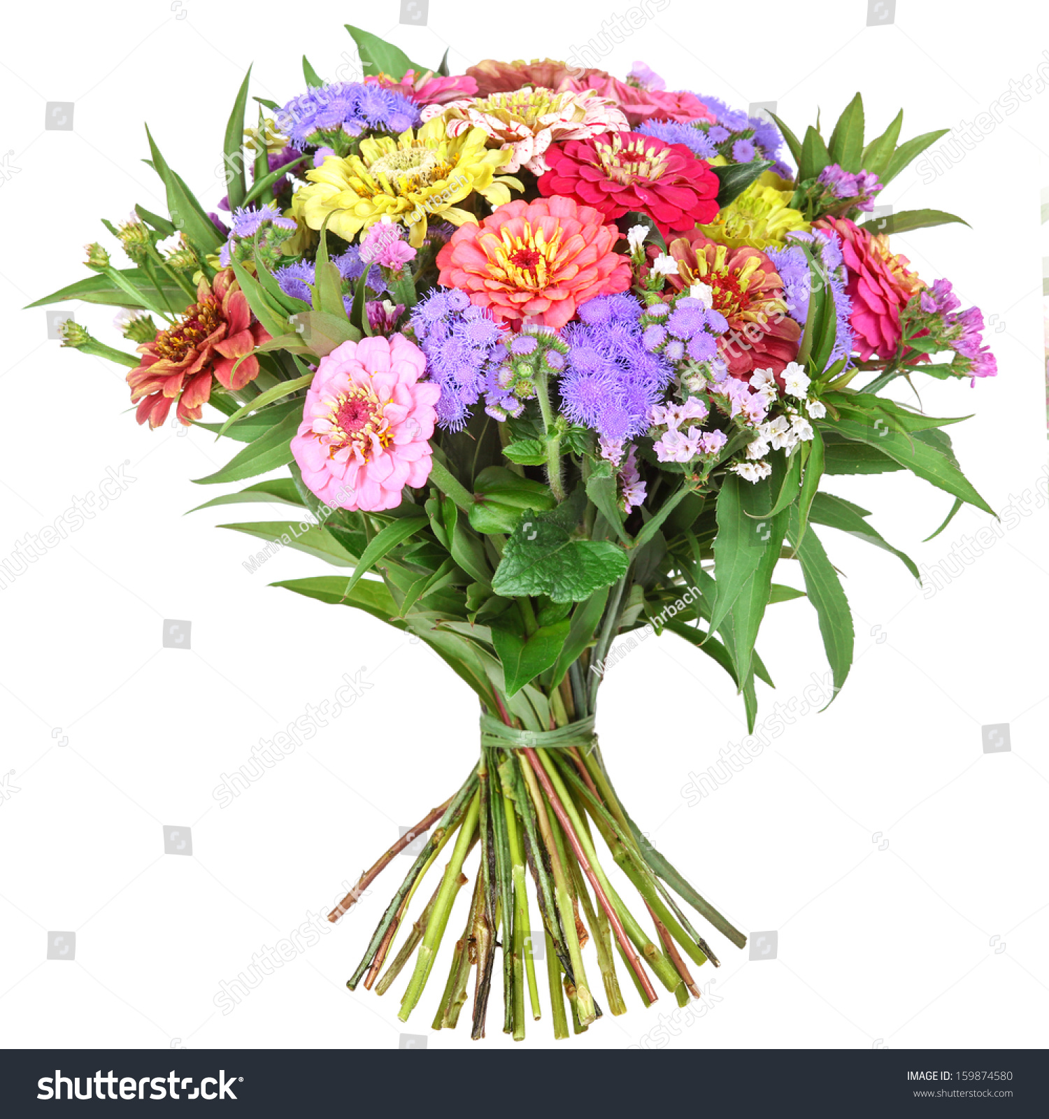 Colorful Bunch Flowers Dahlia Zinnia Stock Photo Edit Now