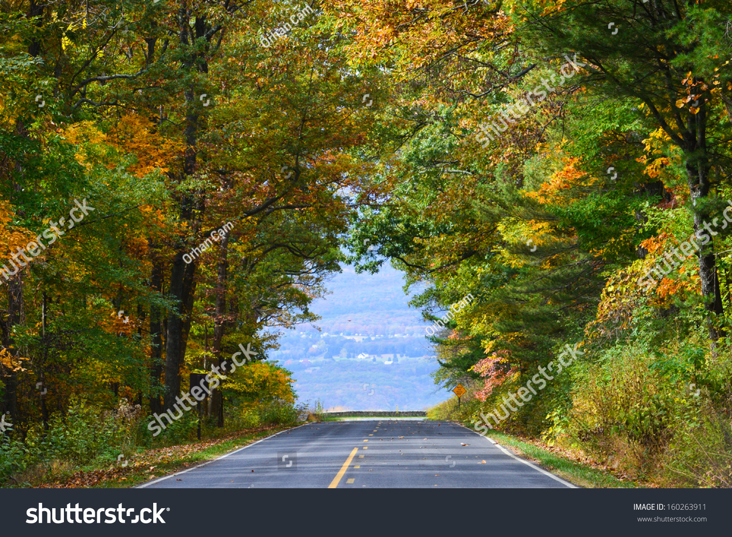 Asphalt Road Among Autumn Trees Which Stock Photo (Royalty Free ...