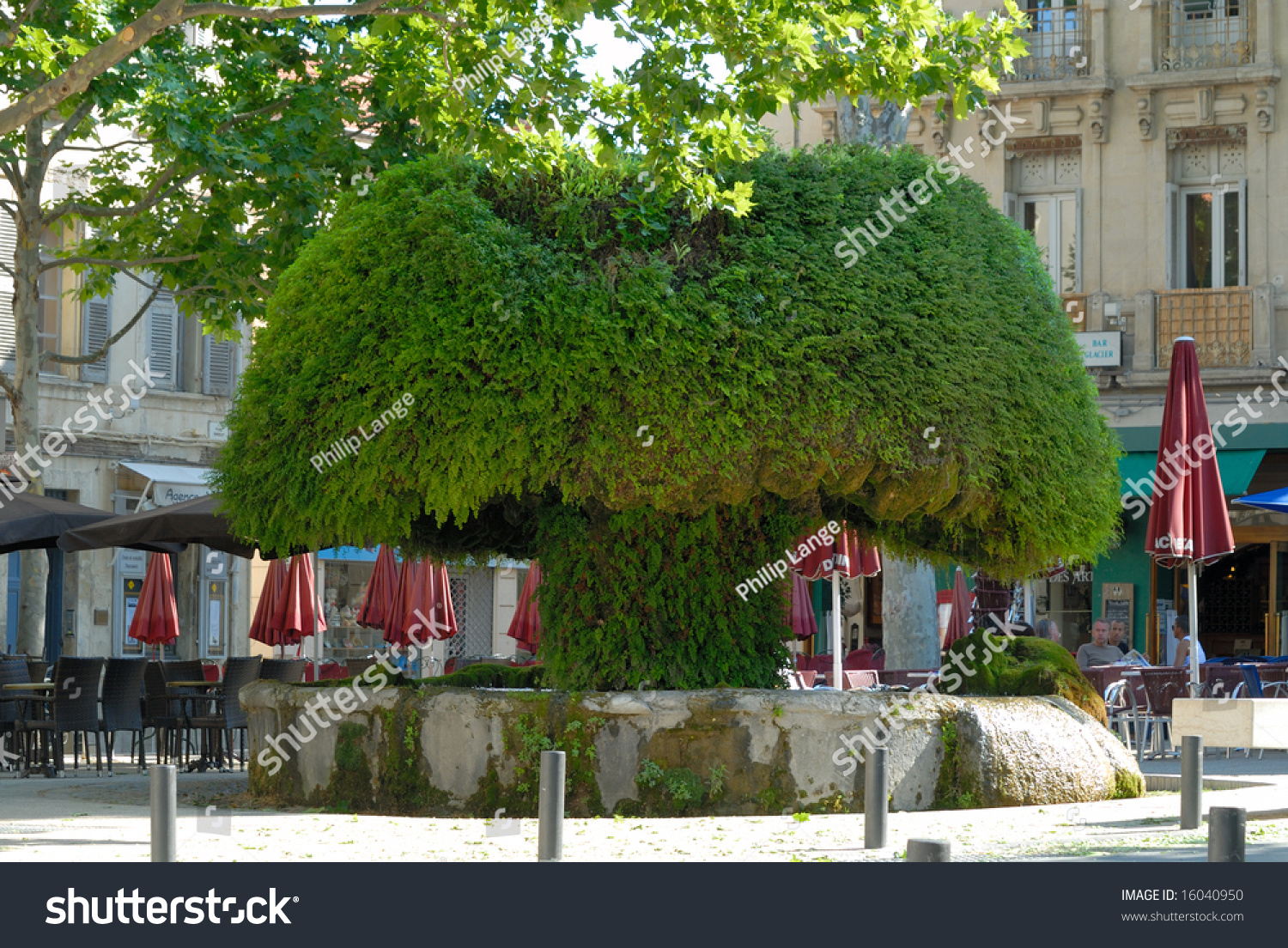 fontaine moussue in salon de provence france stock photo 16040950 shutterstock. Black Bedroom Furniture Sets. Home Design Ideas