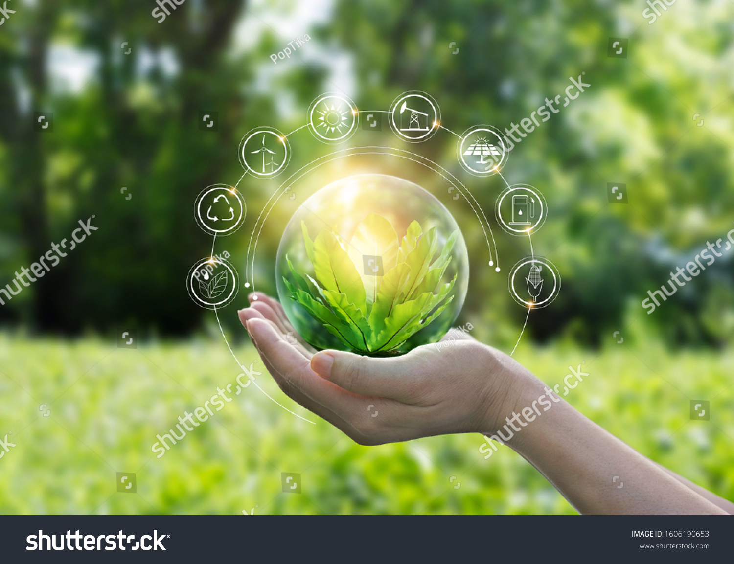 Hands protecting globe of green tree on tropical nature summer background, Ecology and Environment concept #1606190653