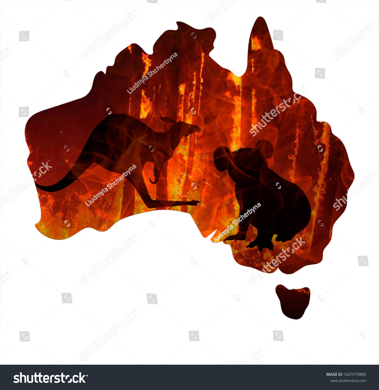 Fire in Australia. Animals killed in Fiers. Catastrophe and apocalypse. Pray for Australia #1607079880