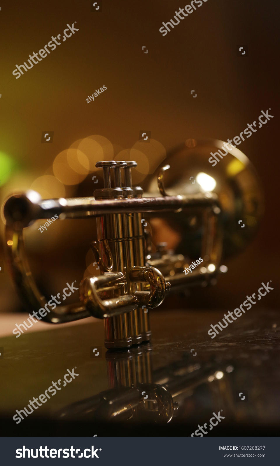 close-up gold color trumpet. Shallow depth of field. Bokeh in the background. brass instrument. breathing instrument #1607208277
