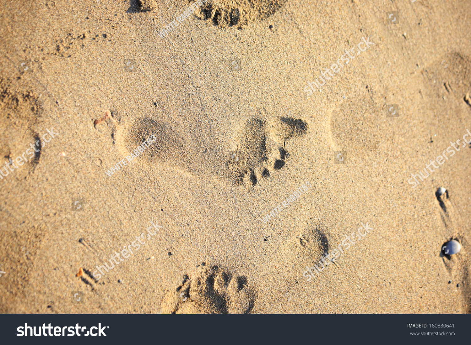 Footprints in the sand | EZ Canvas