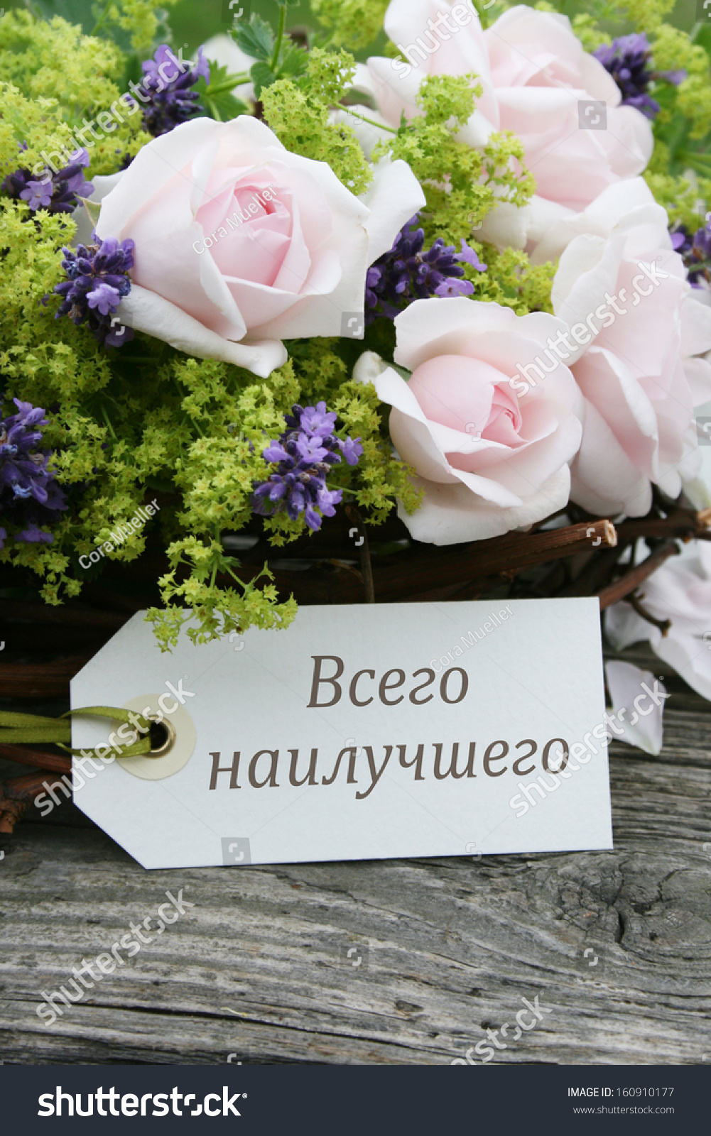 Pink Roses Lavender And Birthday Card Happy Russian