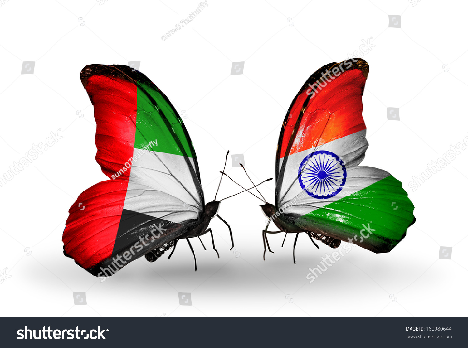 Indian Flag Butterflies: Two Butterflies Flags On Wings Symbol Stock Illustration