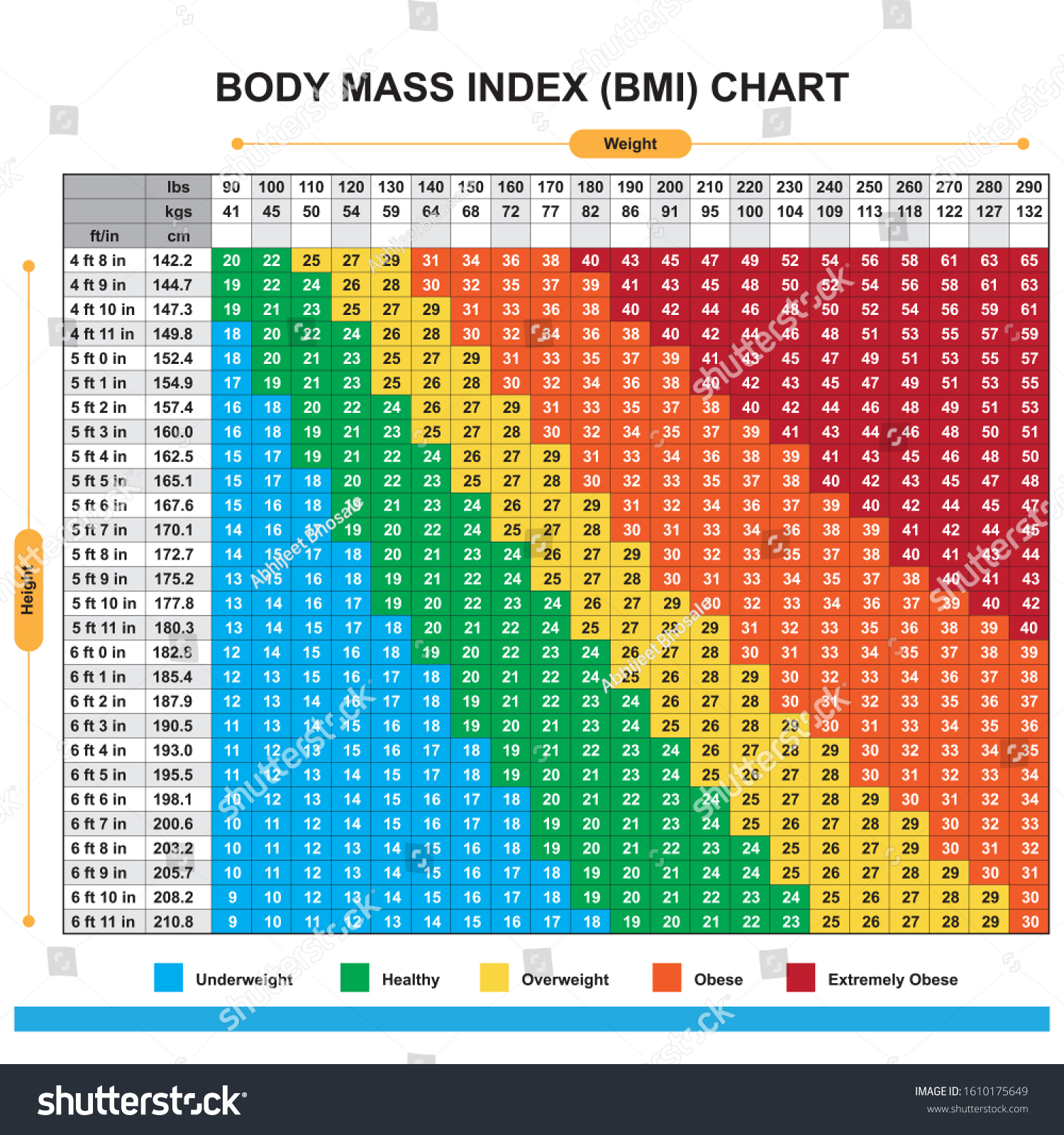 Body Mass Index Bmi Chart Stock Vector Royalty Free 1610175649