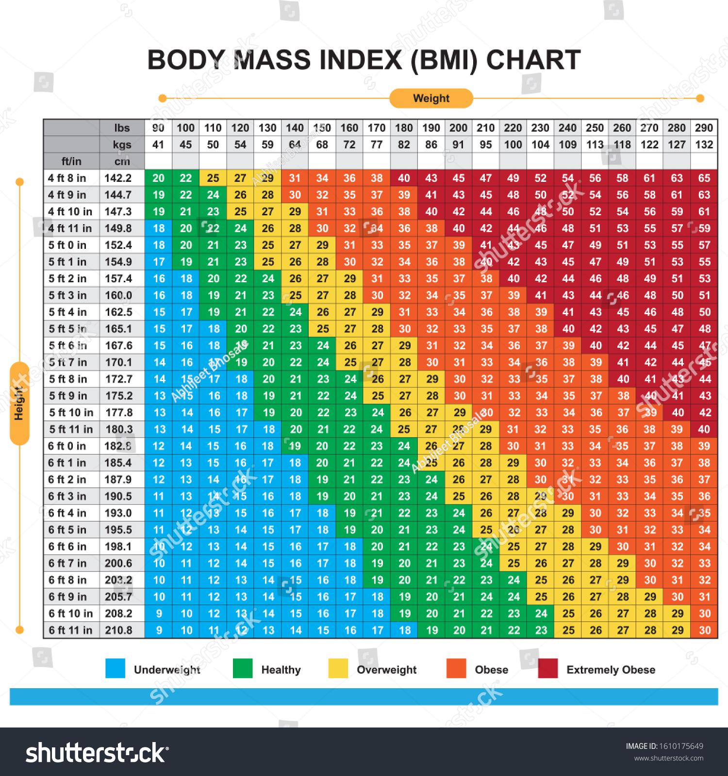 Suchen Sie nach Body Mass Index BMI Chart Stockbildern in HD ...