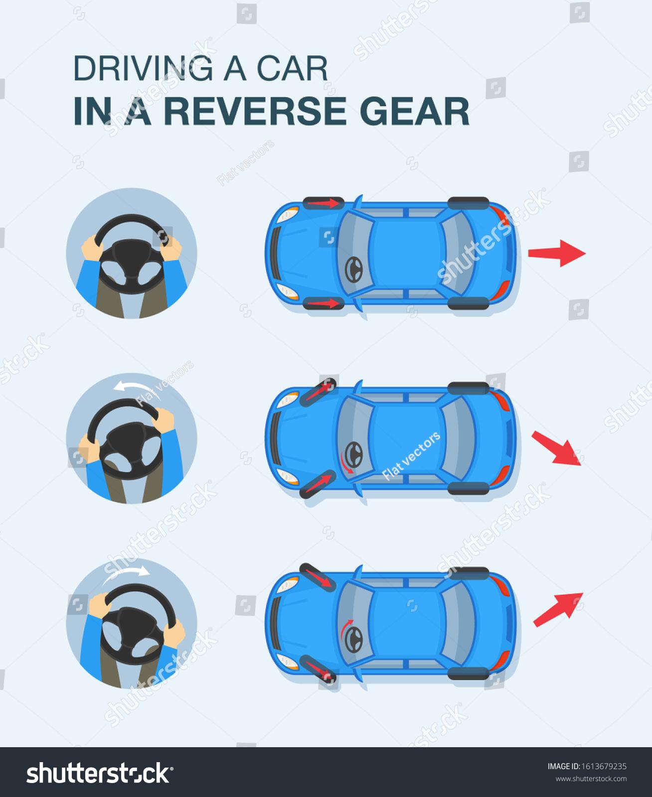 Driving Car Reverse Gear Steering Wheel Stock Vector Royalty Free 1613679235