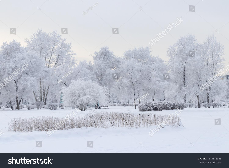 stock-photo-beautiful-winter-landscape-t