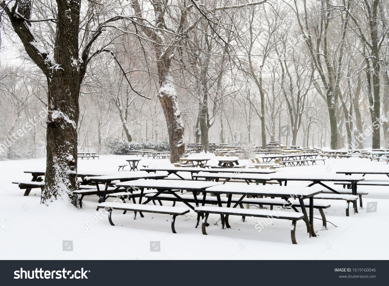 stock-photo-picnic-tables-covered-with-s