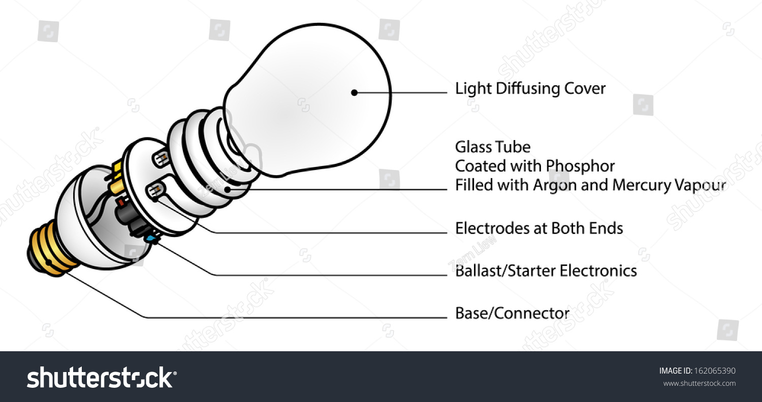 Exploded Diagram Cfl Compact Fluorescent Lamp Stock Vector