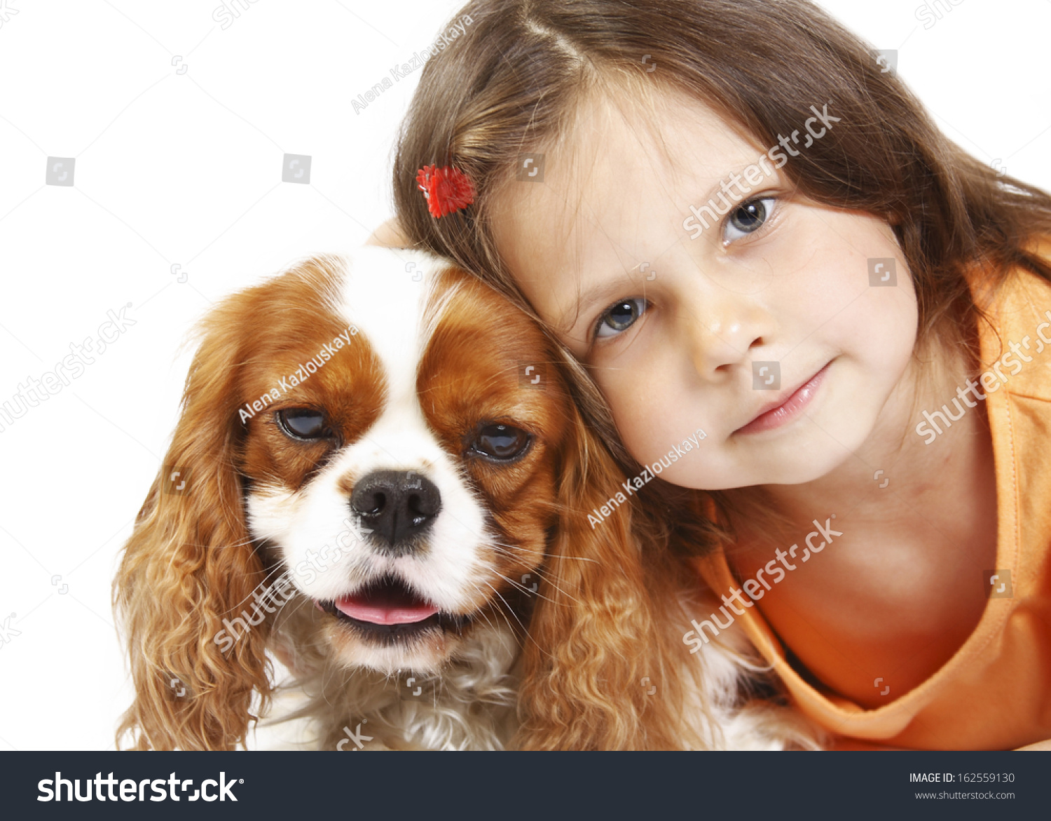 little girl 5 years old and the dog isolated on a white background