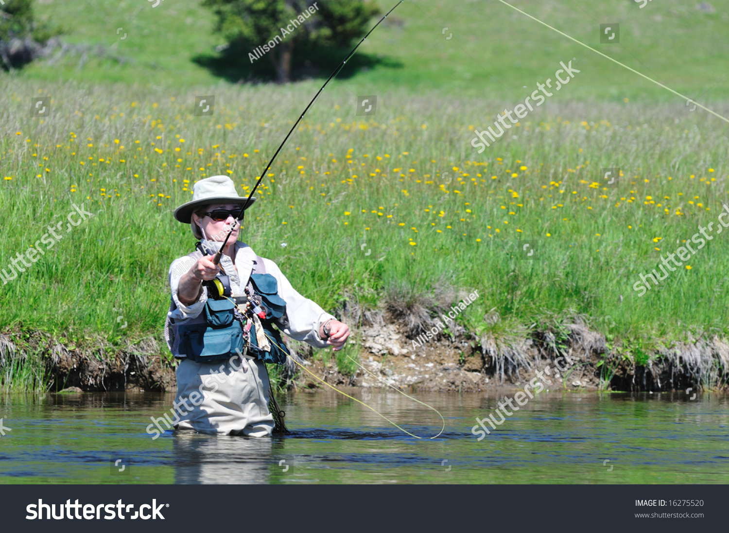 Active senior woman casting a fly fishing rod in the for Do senior citizens need a fishing license