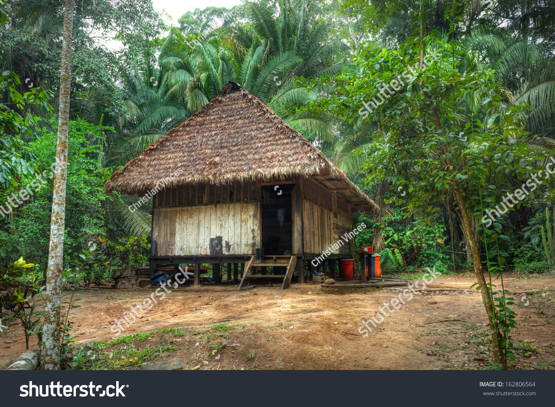 Tipic house amazonas jungle stock photo 162806564 for Jungle house music