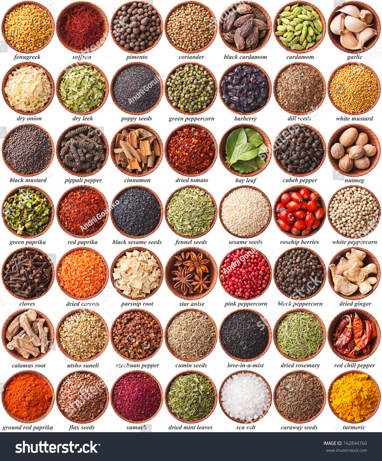 Large Collection Different Spices Herbs Labels Stock Photo ...