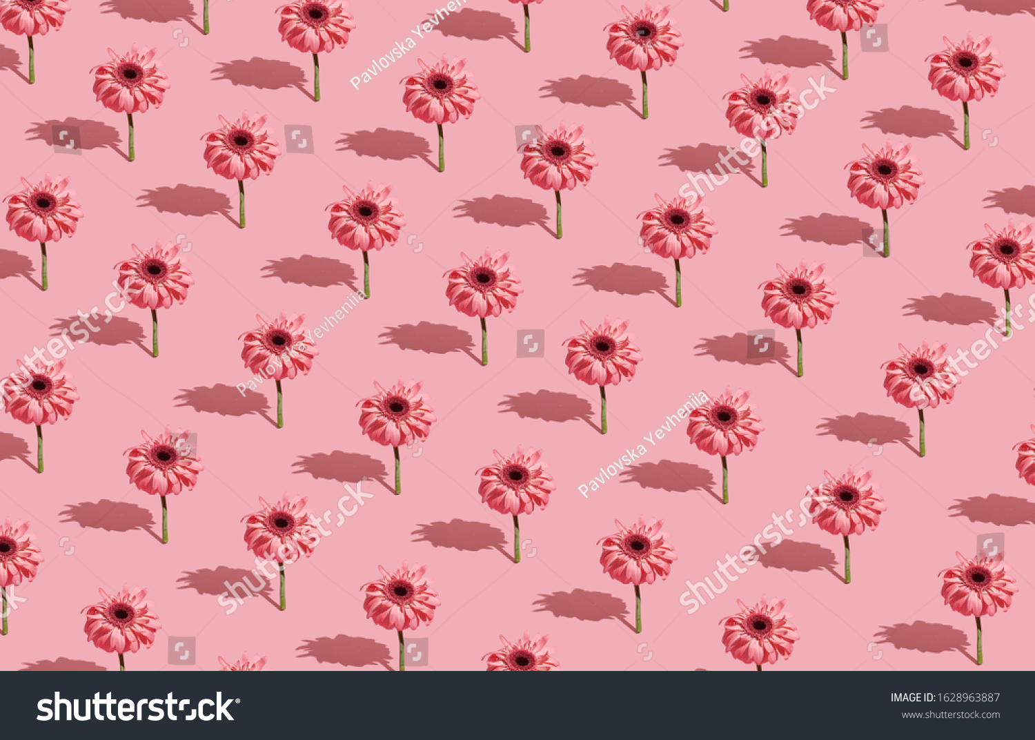 Modern Floral Pattern On Pastel Pink Stock Photo Edit Now 1628963887