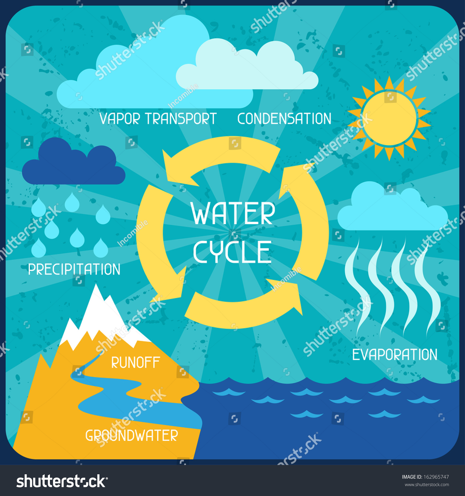 Water Cycle Poster Nature Infographics Flat Stock Vector 162965747 ...