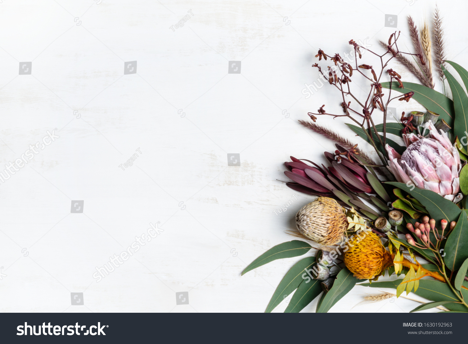 Beautiful flat lay floral arrangement of mostly Australian native flowers, including protea, banksia, kangaroo paw, eucalyptus leaves and gum nuts on a rustic white background. #1630192963