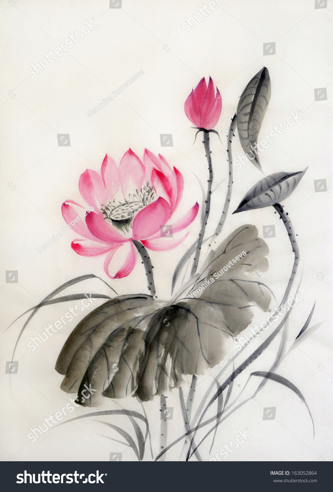 Watercolor Painting Lotus Flower Big Leaf Stock Illustration
