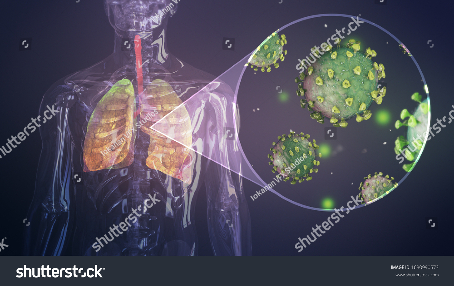 Coronavirus outbreak infecting respiratory system. Influenza type virus background as dangerous flu. Pandemic medical health risk concept with disease cells 3D render. #1630990573
