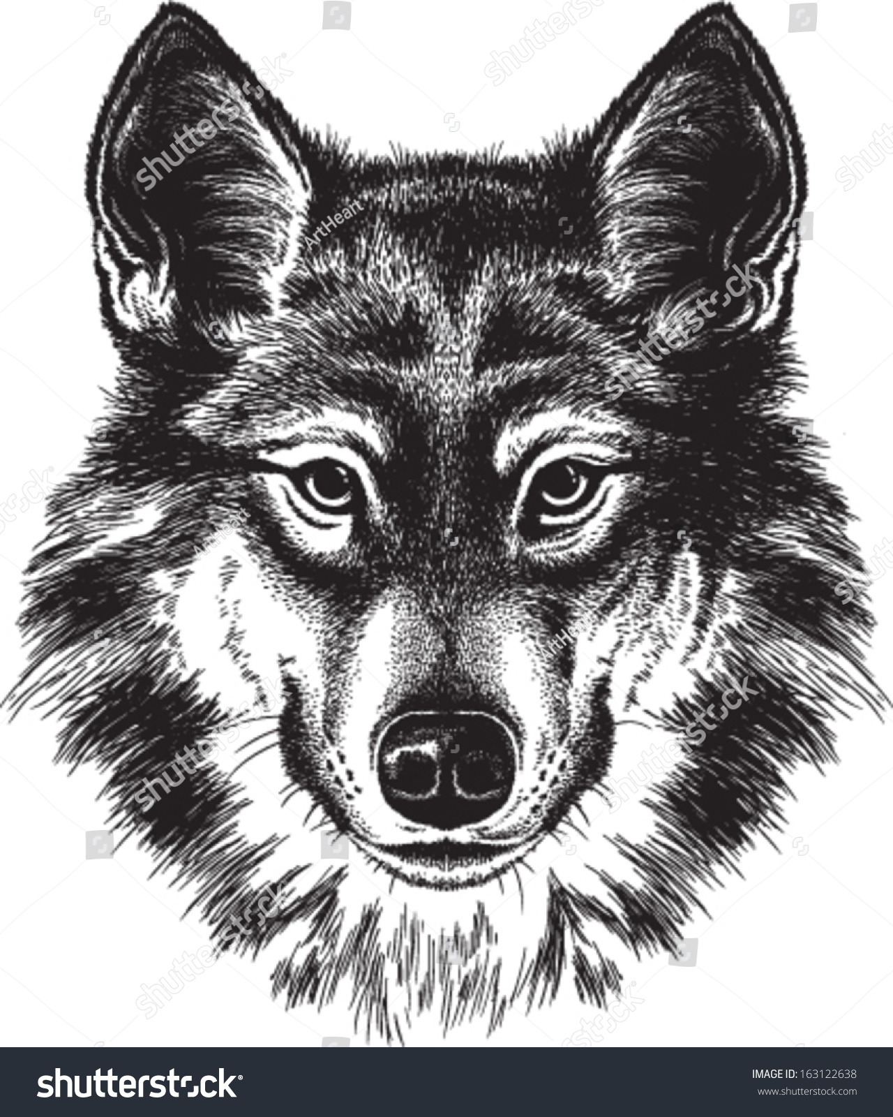 Vector sketch of a wolfs face