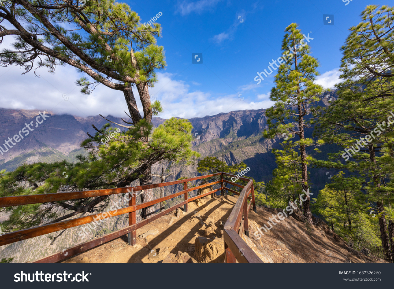 Pine forest at Caldera de Taburiente National Park. Viewpoint La Cumbrecita, La Palma, Canary Island, Spain. #1632326260
