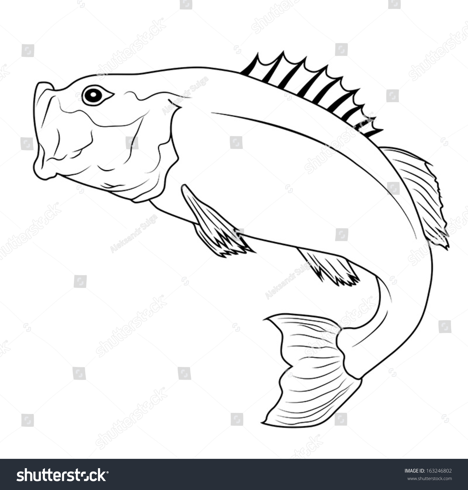 Jumping Bass Fish Outline Illustration Stock Vector Royalty Free