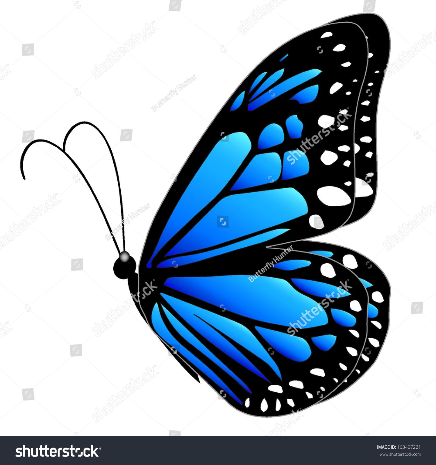 Z Gallerie Butterfly Blue Butterfly Flying ...