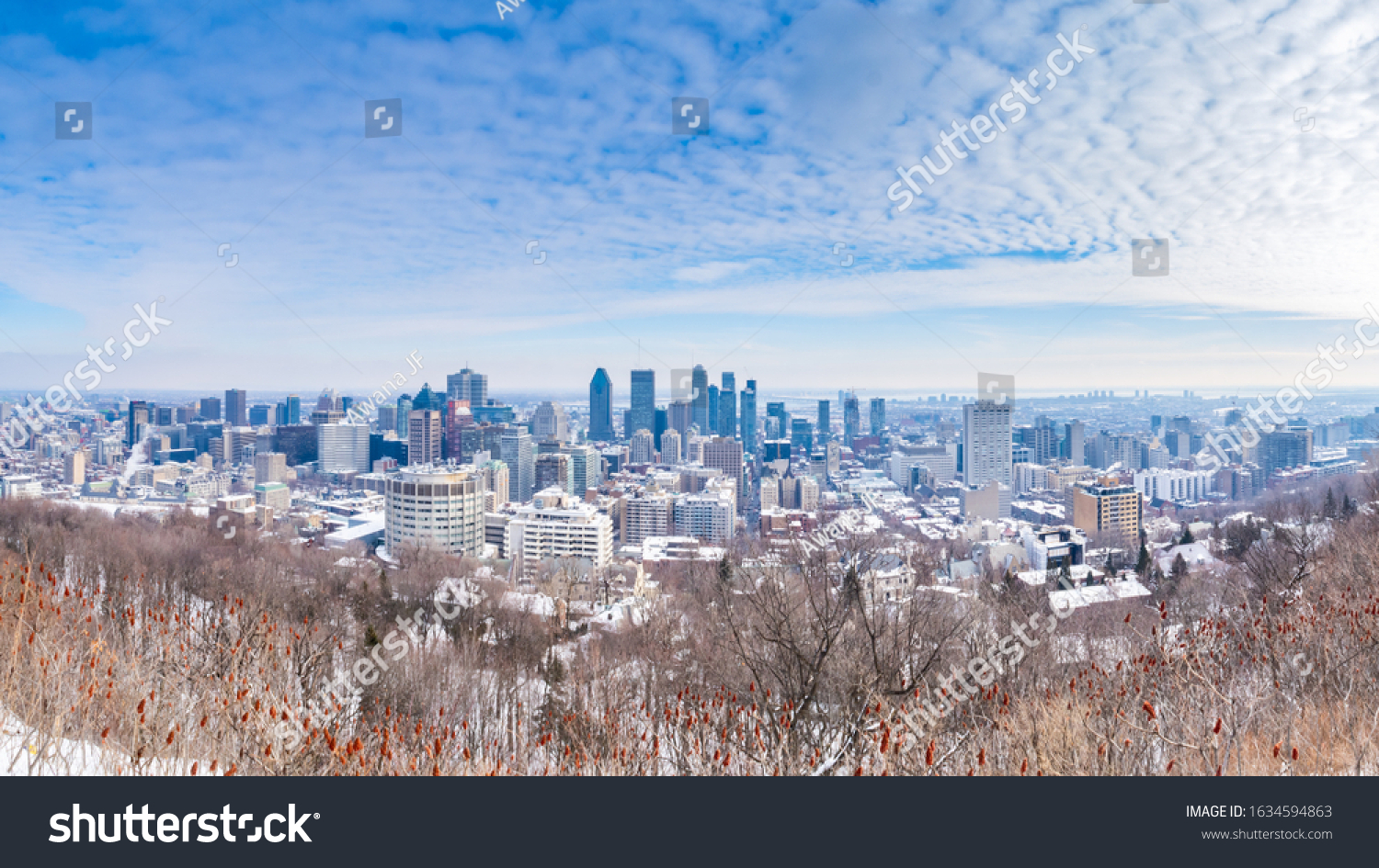 Panorama view of Montreal skyline view from Kondiaronk belvedere on mount royal in winter
