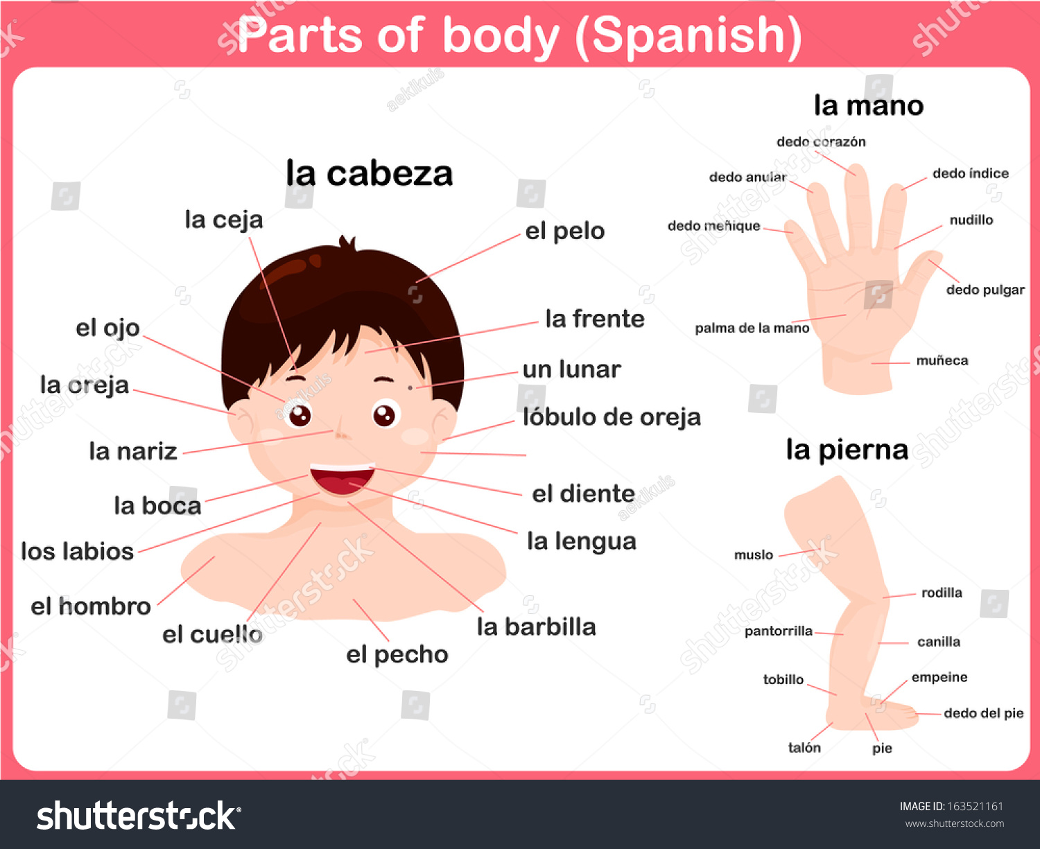 learn spanish pdf free download