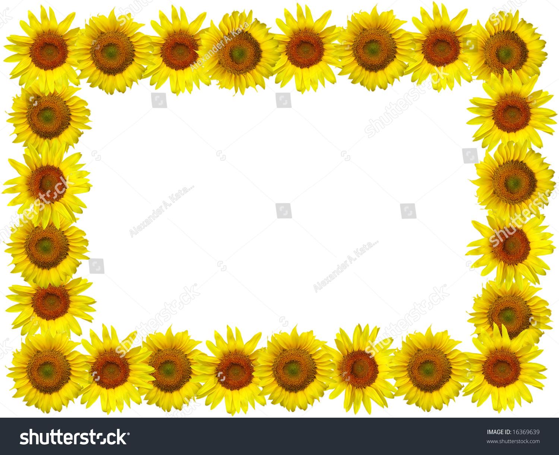 Sunflower Frame Stock Photo (Royalty Free) 16369639 - Shutterstock